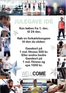 wellcome-julegave
